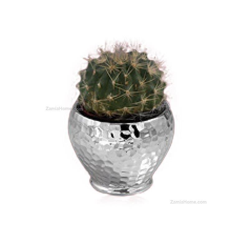 small vase leonardo h cm 10 silver coated resin with succulent le600934e favors silver coated. Black Bedroom Furniture Sets. Home Design Ideas